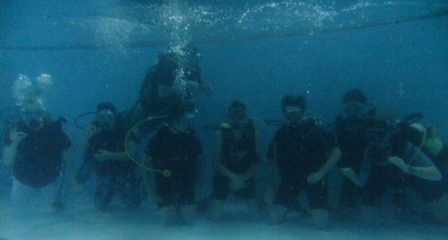 Photo of group of try divers underwater